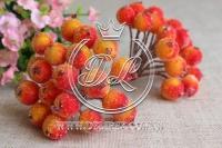 Калина в сахаре , красно-оранжевая