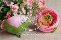 Бутоны камелии, розовые