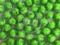 Помпоны 1.5 см. с люрексом, зелёные  (1000 шт.)