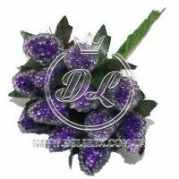 Малина  темно-фиолетовая