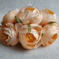 Пионы с тычинками, персиковые №21