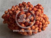 Калина в сахаре ,оранжевая